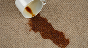 The Best Home Carpet Cleaning Tips